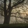 Grebbelinie, Leusden-(flits) 8008-37