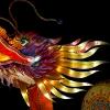 China Light festival Rhenen  januari 2020